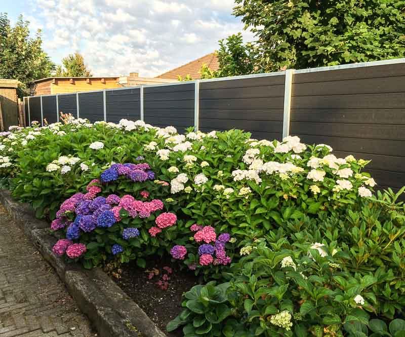 Sichtschutzwand Blumenbeet